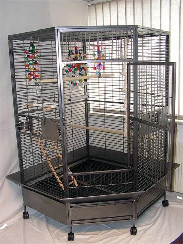 tres grande cage pour couple de perroquets animaux loisirs joncy 71460 annonce gratuite. Black Bedroom Furniture Sets. Home Design Ideas