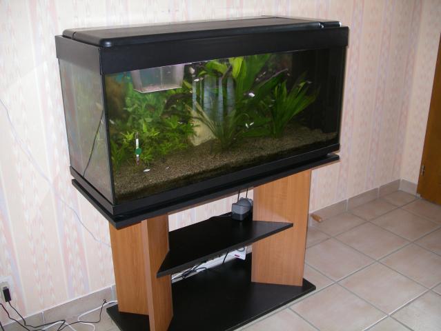 aquarium 200 l meuble animaux loisirs fleurie 69820 annonce gratuite animaux. Black Bedroom Furniture Sets. Home Design Ideas
